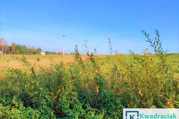 Działki rolne w Żeglcach