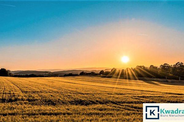 Działka rolna w Bieszczadach